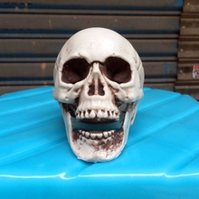 Halloween Skull Skeleton Head Decoration Prop Plastic Skeleton Head Statue Prop Halloween Party Ornament Decor Accessories #830