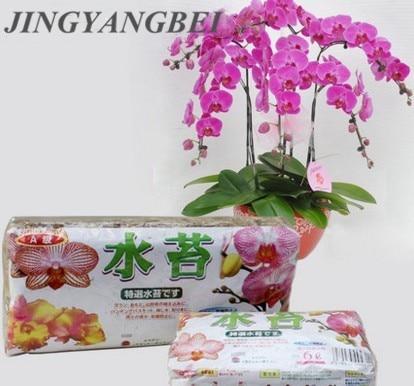 Натуральные 12 л мох Садовые принадлежности увлажняющее питание органическое удобрение для фаленопсис Орхидея мусго сфагня цветочный горшок деко