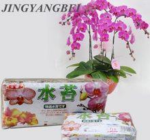 Natural 12l musgo musgo sphagnum flowerpot deco fertilizante orgânico de nutrição hidratante para phalaenopsis