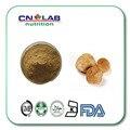 Hot sale Hericium erinaceus extrato/cogumelo cabeça de Macaco extrato Polysacchrides 50% 500g