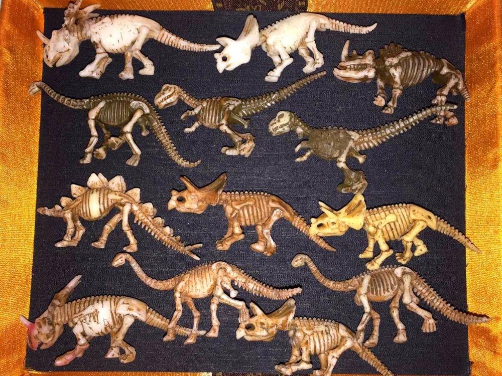 pvc  figure   Dinosaur skeleton  13pcs/set bwl 01 tyrannosaurus dinosaur skeleton model excavation archaeology toy kit white