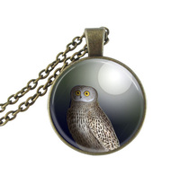 Owl necklace full moon pendant bird jewelry glass cabochon necklace animal choker neckless antique bronze chain necklaces gifts