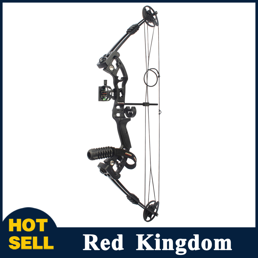 цена 30-55 Lbs Compound Bow with Sight Brush Stabilizer D-Ring Wrist Ropes and Release Aid for Outdoor Archery Hunting Shooting онлайн в 2017 году