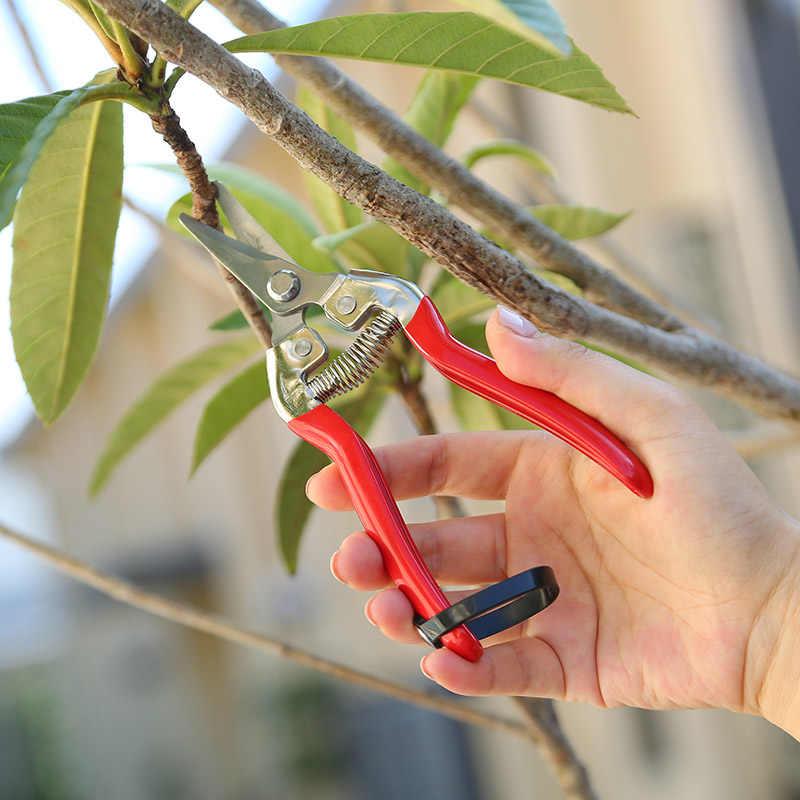 Ciseaux de jardinage sécateur ciseaux de cueillette de fruits à économie de travail Branches de fleurs Branches de vigne brindilles cisailles d'arbres fruitiers