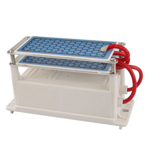 Image 4 - Air Purifier for home Ozone Generator 220v/110v 10g Ozonizador Fresh Air Cleaner Ozonizer Odor Eliminator Sterilization