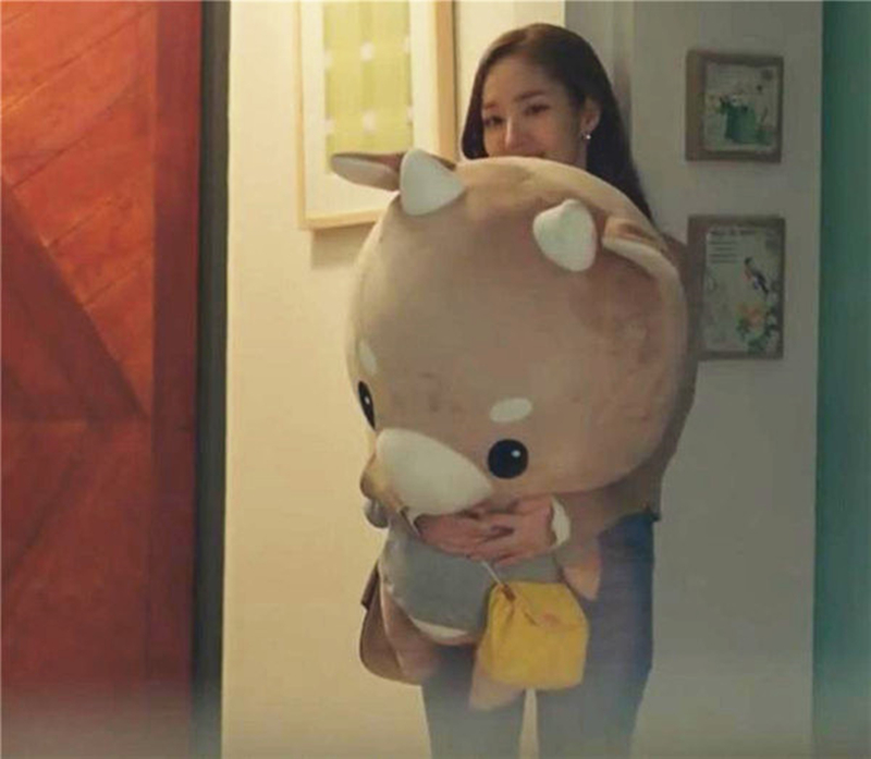 TV-Lovely-Whats-Wrong-With-Secretary-Kim-Hard-Caw-Pet-Doll-Plush-Korean-Drama-Stuffed-Child (3)