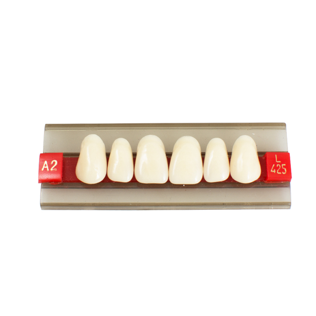 US $4 49 10% OFF Orthodontic Braces Oral Care Acrylic Resin Denture Dental  Teeth Shade G425 A2 A3 on Aliexpress com   Alibaba Group