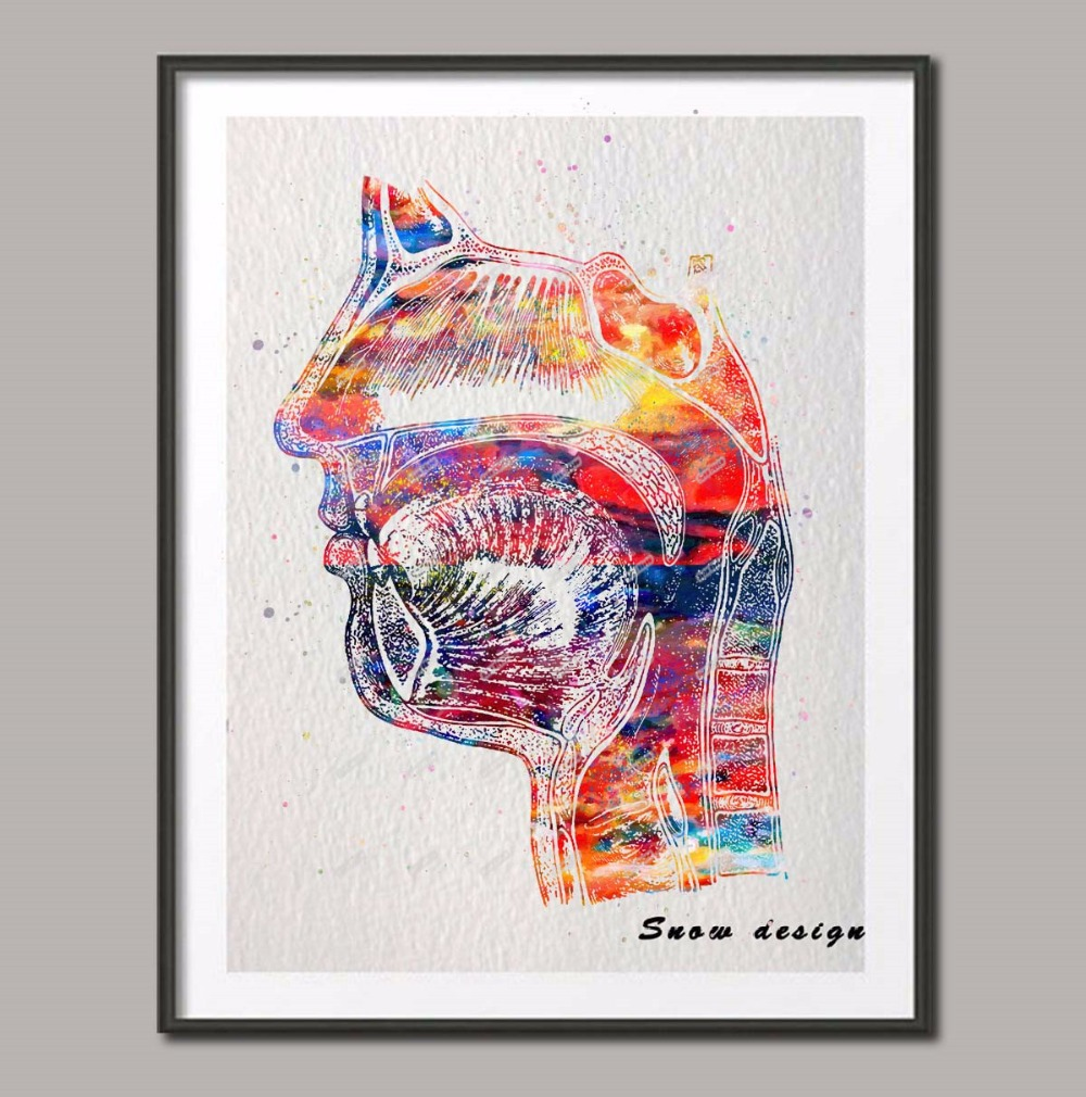 Anatomy Prints Set of 7 Gifts for Doctor Wall Art A4 A5 Gallery Wall  Posters