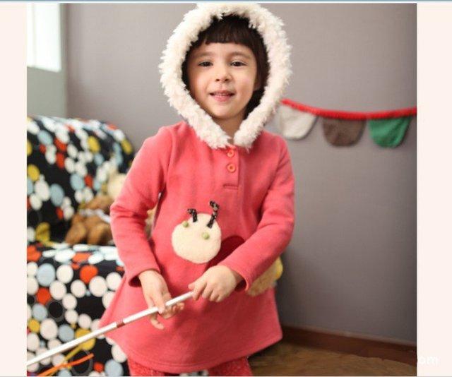 026e1f6e0 10pcs wholesale 2012 Autumn Winter girls hoodies baby hoodies ...