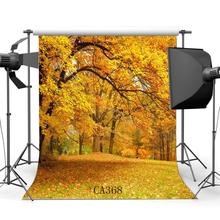 Photography Backdrop Rural Forest Autumn Fall Leaves Natural Scene Seamless Background Studio Prop CA368