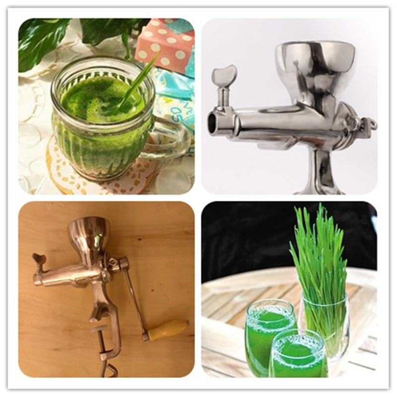 Wholesale 304 Stainless Steel Manual Wheatgrass Juicer Extractor Hurom Slow Juicer