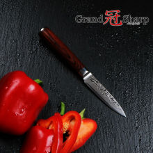 GRANDSHARP 3 5 Inch Paring knife 67 layers Japanese Damascus Stainless Steel VG 10 Core font
