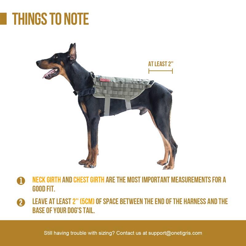 Tactical Week's Dollar Dog 4