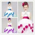 Muchacha del niño recién llegado ropa, la princesa del cordón del vestido de princesa infantil, vendedor in china! Baby Girl Clothes