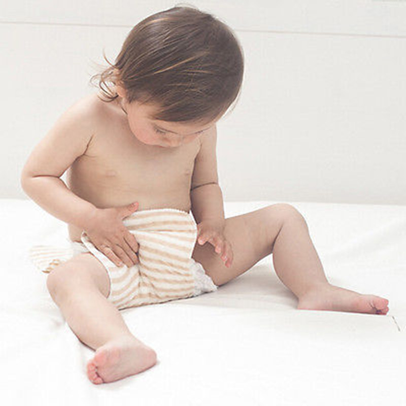 10pcs Ecological Cotton Reusable Infant Baby Cloth Diaper Nappy Liners Washable Nappies rudi hilmanto local ecological knowledge