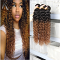 Brazilian 2 Tone Ombre Virgin Hair Kinky Curly Rosa Hair Products 1b 30 Ombre Kinky Curly Weave Wet And Wavy Human Hair Bundles