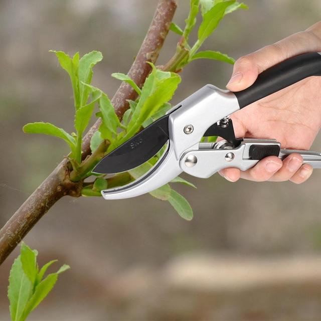 Obstbaum Schneiden gartenschere schere pflanzen garten bonsai tools pro stahl bonsai