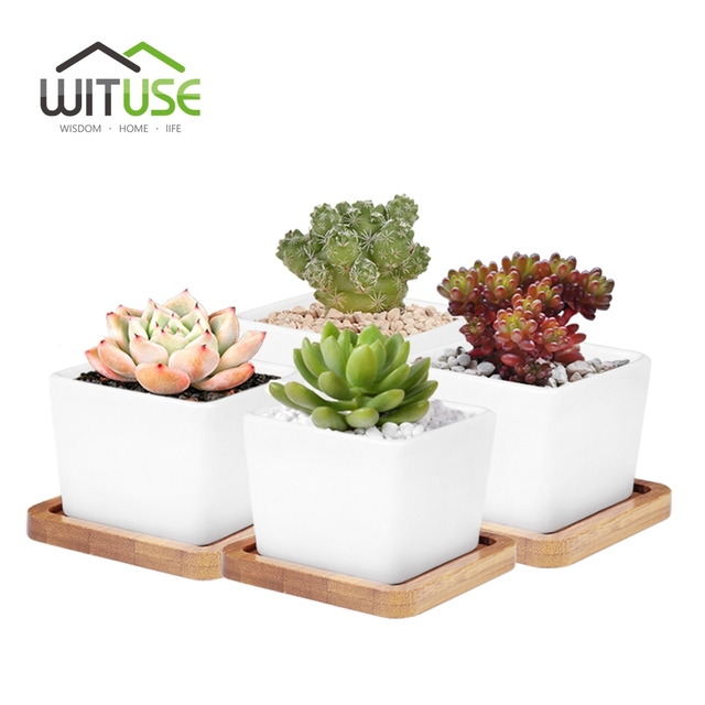 Wituse 4x L Size Glazed Bonsai Pot Succulent Plant Garden White Ceramic Flower Indoor Desktop Decorative Moss Flowerpot