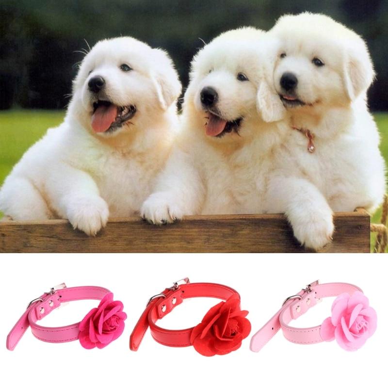 Sweet Faux Leather Collar Pet Dog Choker Adjustable Flower Buckle Neck Strap
