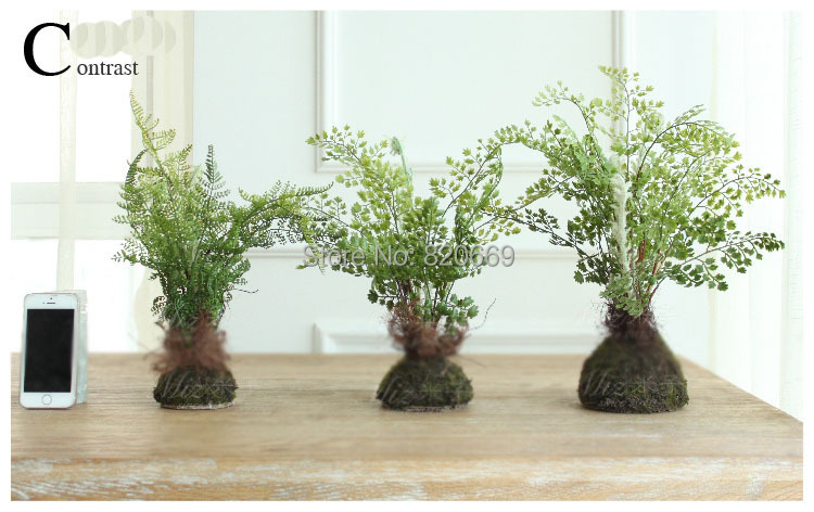 Aliexpress Com Buy 3 Different Size Plastic Plants Home Decoration Artificial Fen Leaves Garden Imitation Plants Reptile Terrarium Decoration From