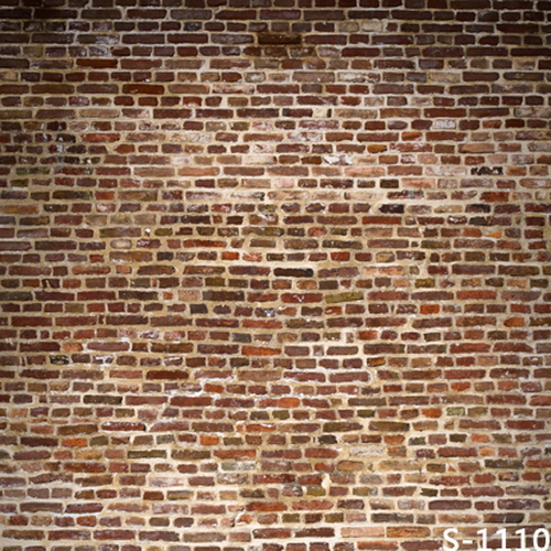 Thin vinyl cloth photography backdrops computer Printing photo backdrops brick wall backgrounds for photo studio S1110 600cm 300cm backgrounds single wall folds of cloth worn photography backdrops photo lk 1439