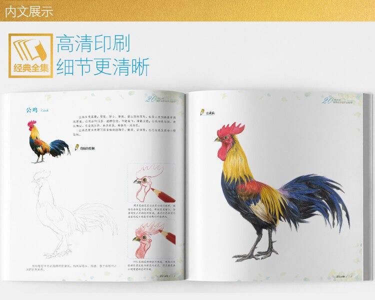 Cheap book chinese