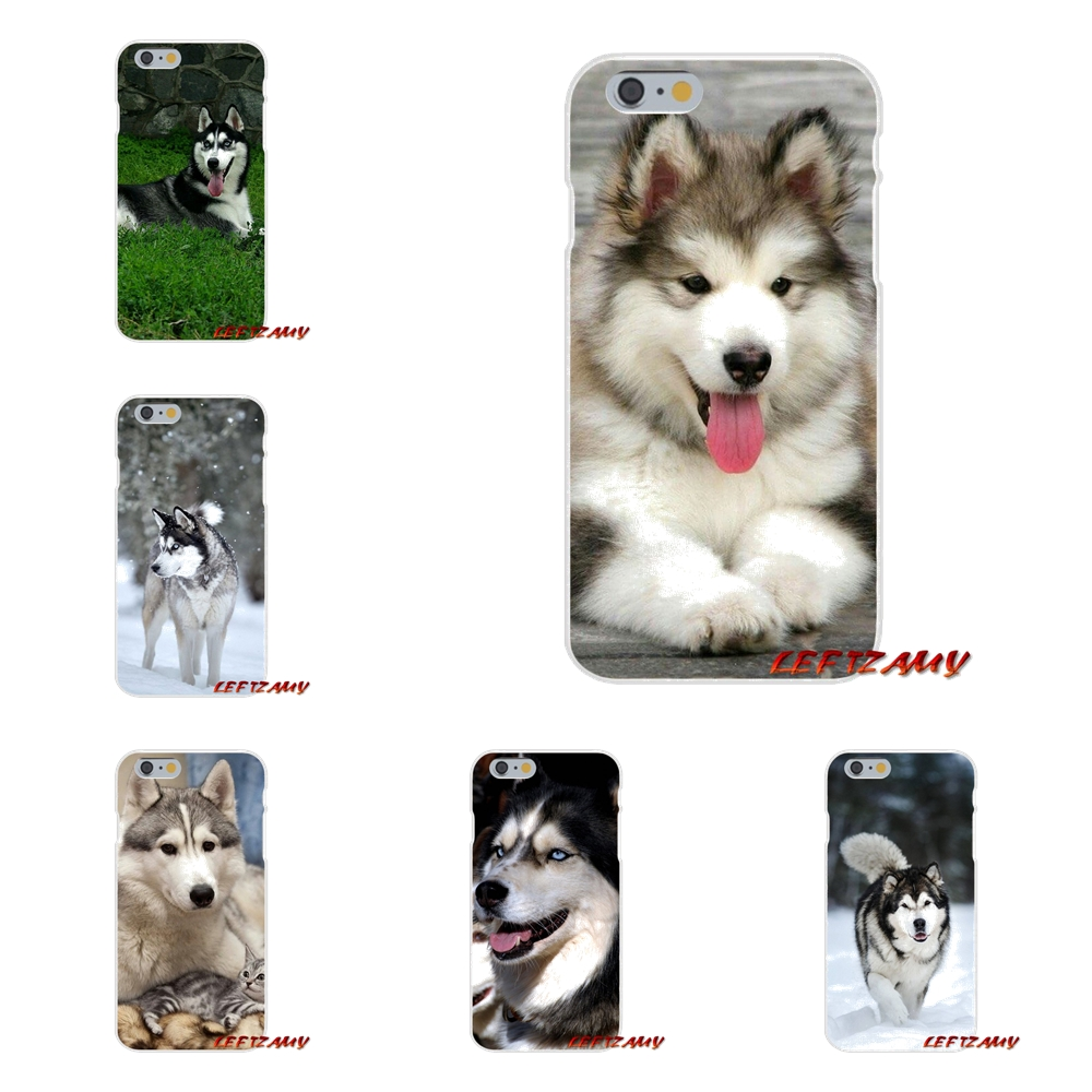 For Huawei P8 P9 P10 Lite 2017 Honor 4C 5X 5C 6X Mate 7 8 9 10 Pro Transparent Soft TPU Case Alaskan Malamute <font><b>Siberian</b></font> <font><b>husky</b></font> dog image