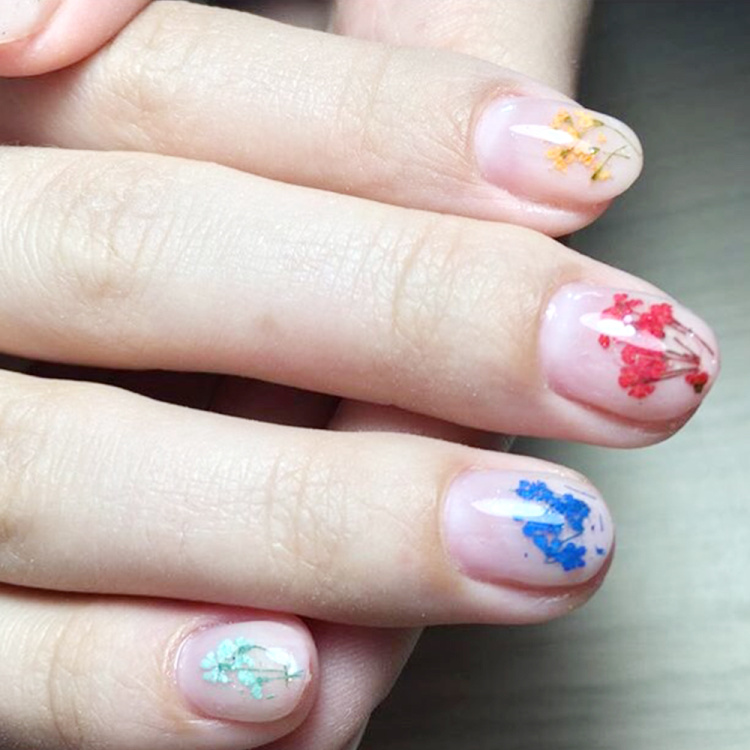 Dried Flowers Nail Art Decoration Natural Dry Floral Leaf DIY Sticker Beauty Jewelry Tips Colorful Nail Gel Ornaments 01 (4)