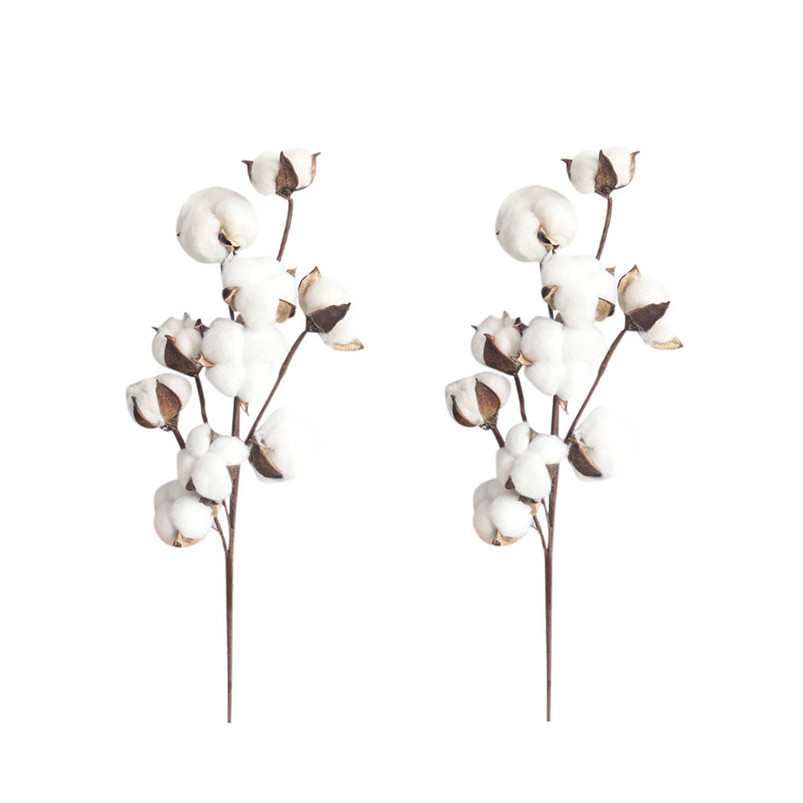 21 inch Naturally Dried Cotton Stems Artificial flower Farmhouse Sty Home Decor Bouquet Vase Holiday party Literary Simple H01 (7)