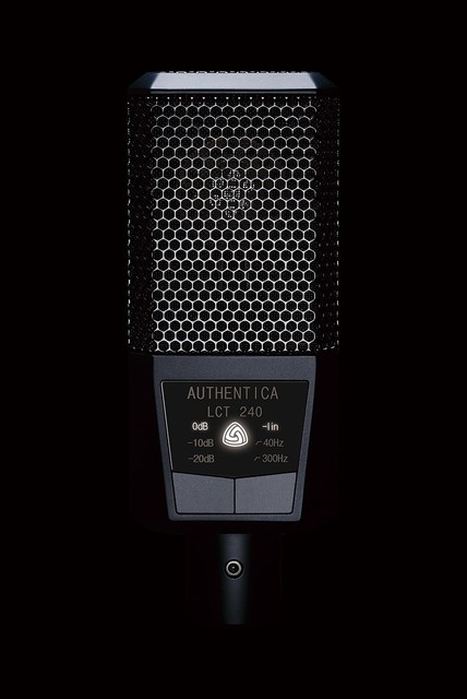 LEWITT LCT 240 Professional condenser microphone for recording and Broadcasting Vocal and instruments