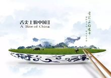 A Bite of China. 1 book +7DVDs. Learning Chinese Traditional Cuisine. studying cooking Culture knowledge is priceless no border- fish butterfly china chinese traditional patterns painting tattoo reference book
