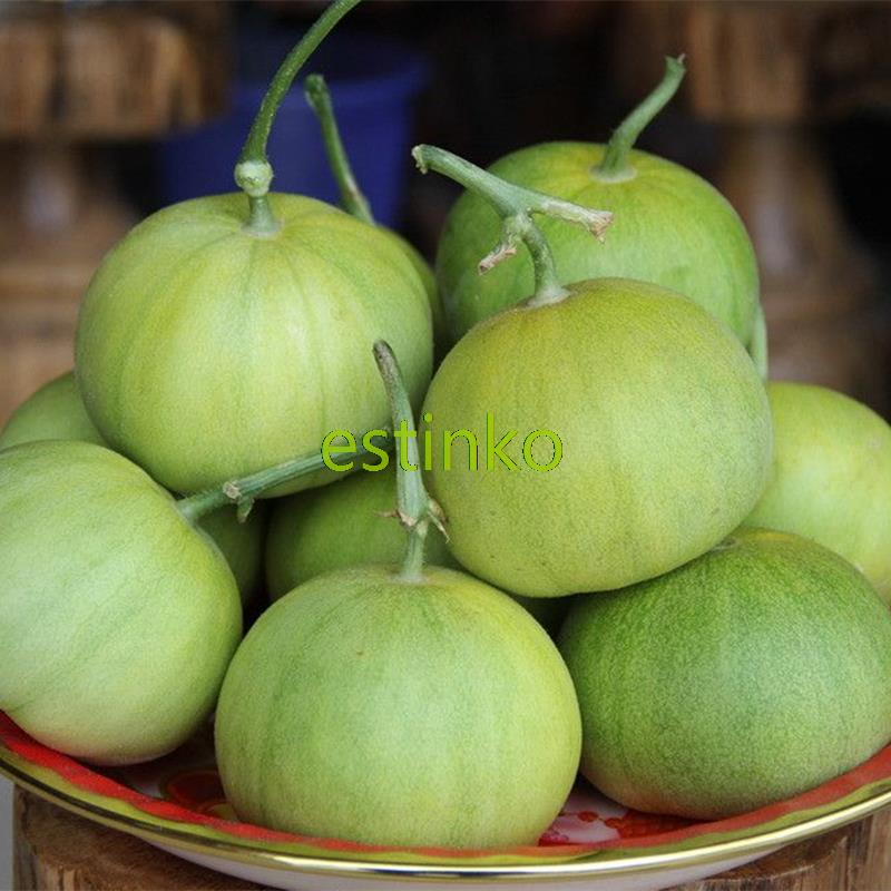 30pcs/lot Japanese Muskmelon Seeds Green Sweet Melon Seeds Fruit and Vegetable Home Garden Bonsai Potted Plant Honey Melon