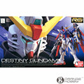 OHS Bandai RG 11 1/144 ZGMF-X42S Destiny Gundam Mobile Suit Assembly Model Kits