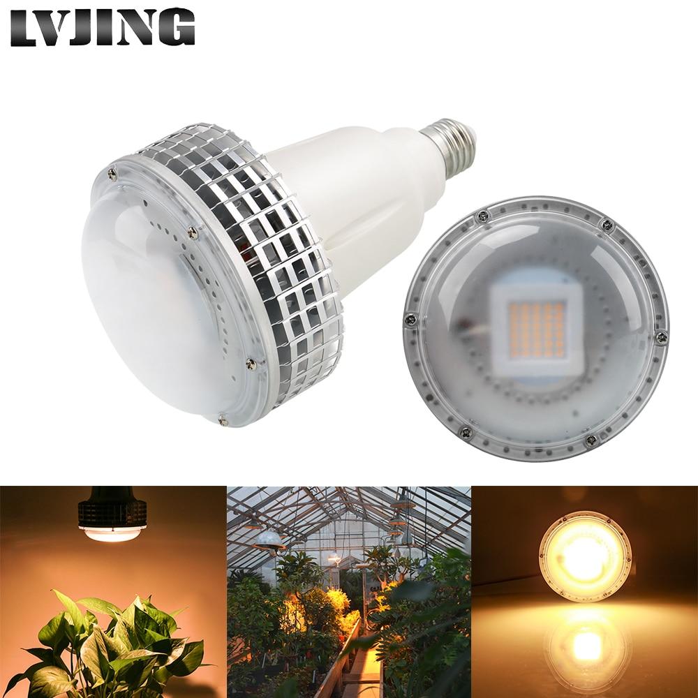 White Led Grow Lights: Full Spectrum 100W Led Grow Light Phytolamps For Plant
