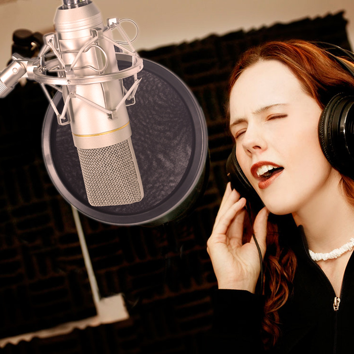 Livraison Gratuite! professionnel Condenseur À Son Enregistrement Microphone USB Microphone avec Shock Mount pour Radio Braodcasting Chant