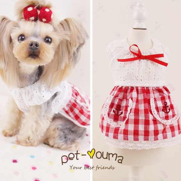 Maltese Dog Clothes Reviews