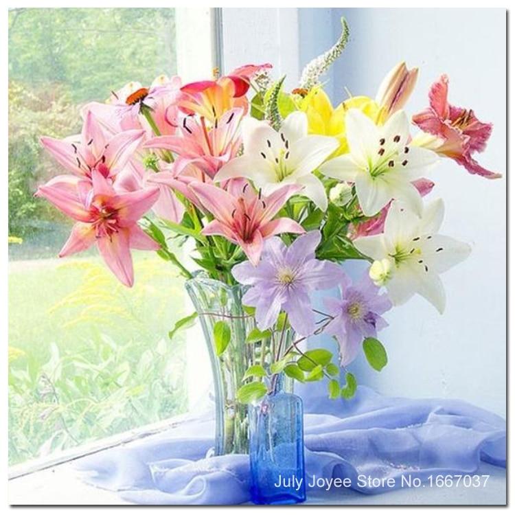 친절의 꽃에 대한 이미지 검색결과
