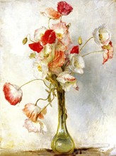 Unframed Canvas Prints - Poppies - By Tom Roberts