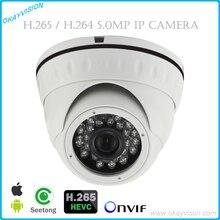 1080P FULL HD IP Camera Indoor Dome Cam 5.0MP H.264 H.265 Onvif P2P Network Camera Indoor Outdoor IP Camera Metal Case IP66