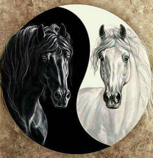 Ying & Yang Horses