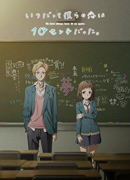 《我们的爱总是只有10厘米。》2017年日本爱情,动画动漫在线观看