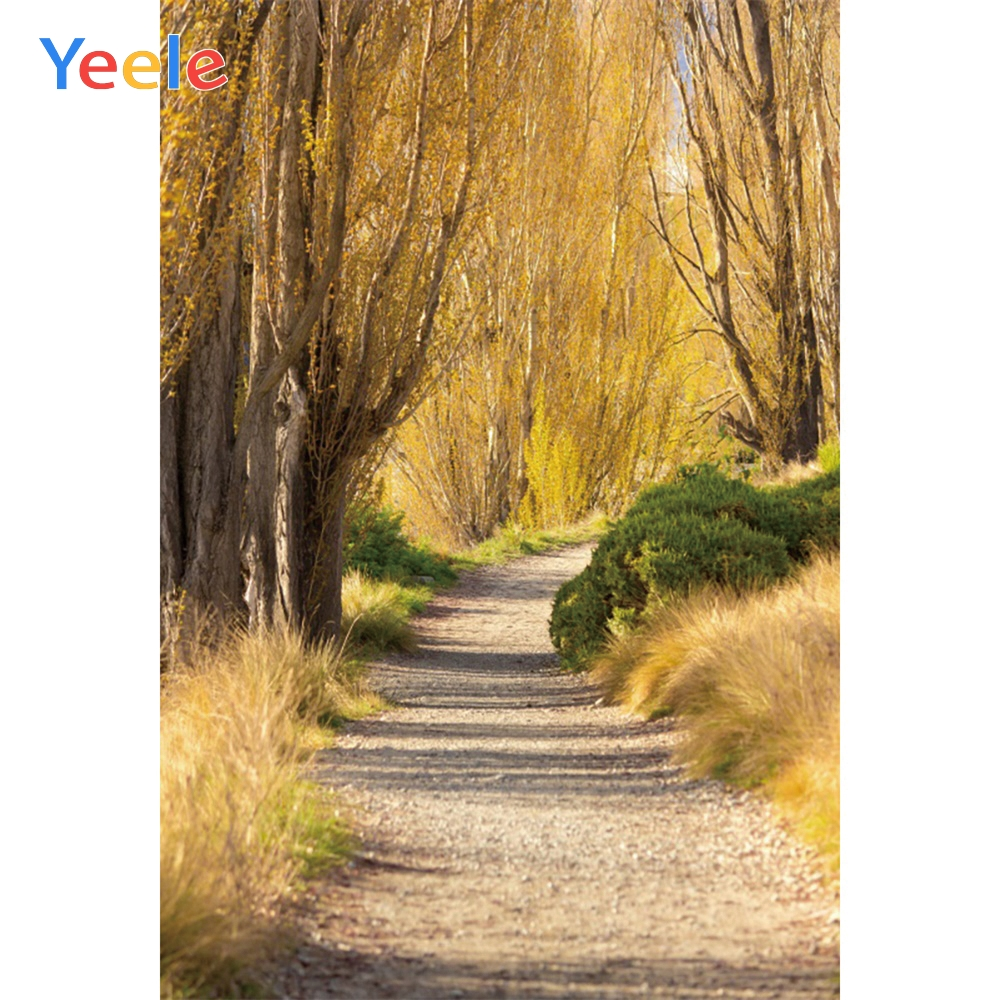 Yeele Autumn Forest Road Trees Scenery Boulevard Photography Backgrounds Personalized Photographic Backdrops For Photo Studio