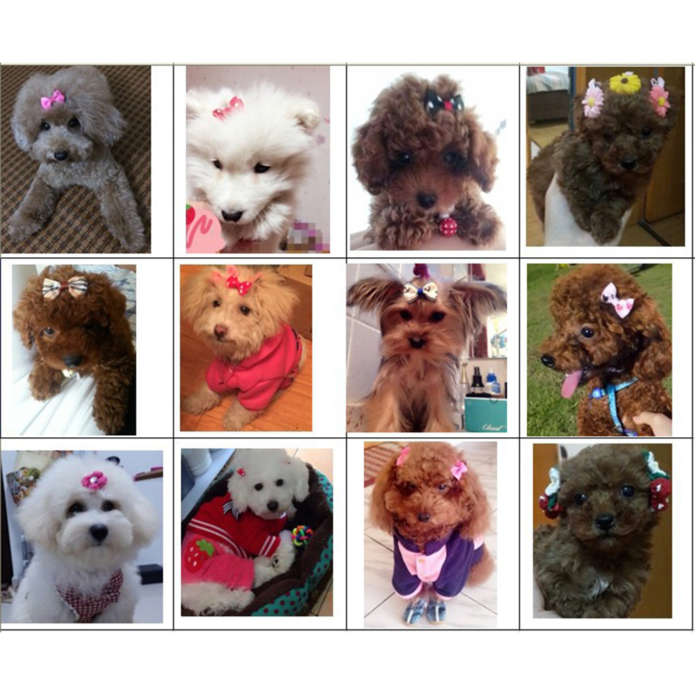 20Pcs Mixed Hair Bows Rubber Bands Candy colors Fashion Cute Dog Puppy Cat Kitten Pet Toy Kid Bow Tie Necktie Clothes decoration (2)