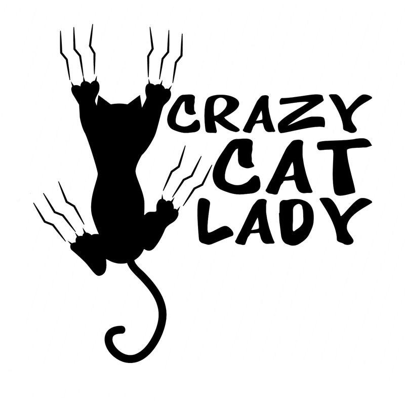 Wholesale 5pcs,10pcs,14CM*14CM Crazy Cat Lady Vinyl Stickers Decals Car Styling Black Silver