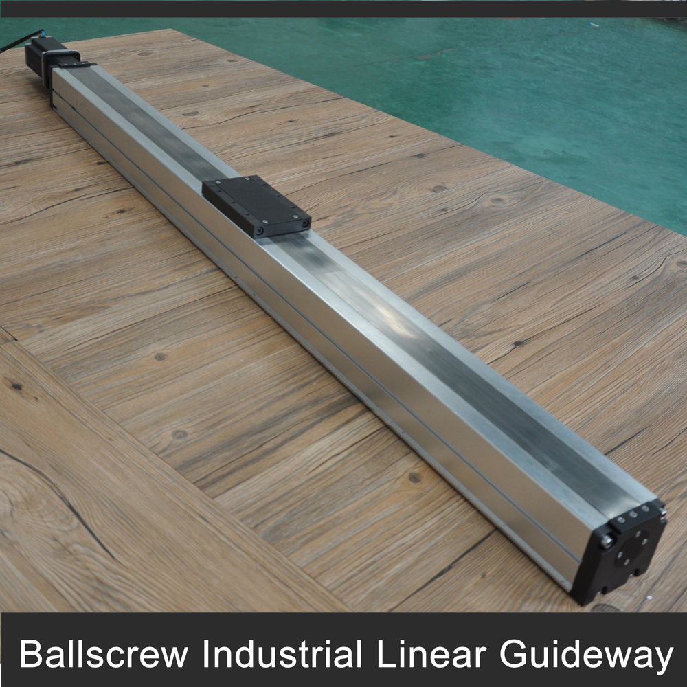 Free shipping Professional service 1.4M stroke enclosed linear motion guide with heavy load