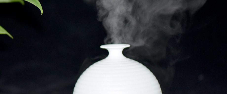 air humidifier (17)