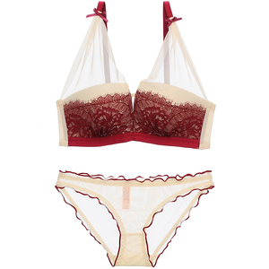 Image 4 - Sexy Lace Women Underwear Set Push Up Bra Sets lash love seamless Brassiere wire free Deep V Small Chest Lingerie and Pant Sets