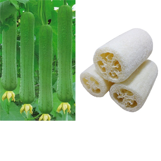 1PC New Household Natural Loofah Bath Body Shower Towel Sponge Merchandises Scrubber Spa Massage Pad Smooth Washcloths Eco Hot
