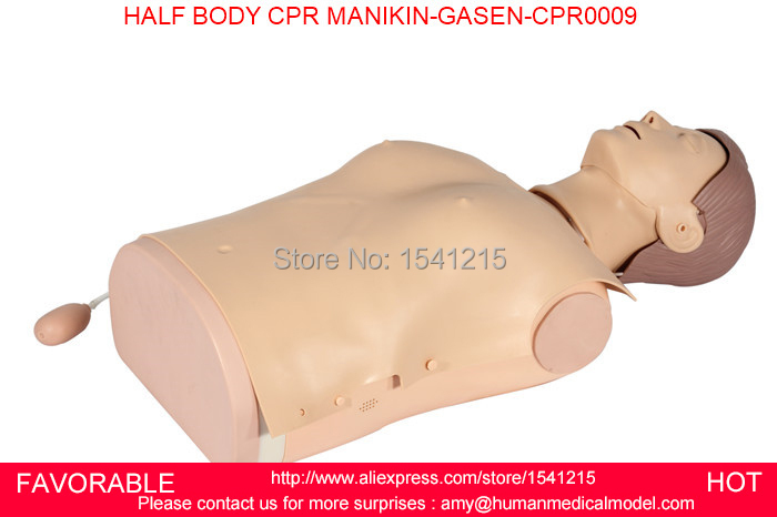 CPR TRAINING HALF BODY CPR TRAINING MANIKIN MODEL , FIRST AID MANIKIN, MALE CPR MANIKIN,HALF BODY CPR MANIKIN-GASEN-CPRM0009 iso bust cpr model cpr model computer control cpr practice model cpr training dummies