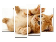 4 pieces / set Modern Animals Pet Cat Quotes Canvas Art Print Poster Nursery Wall Picture Kids Baby Room Decor Painting(China)